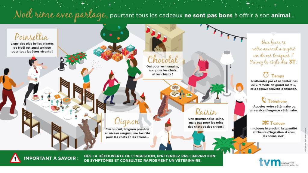INFOGRAPHIE ET VISUEL ECRAN SALLE D'ATTENTE : Fêtes de Noël et risques d'intoxications 2