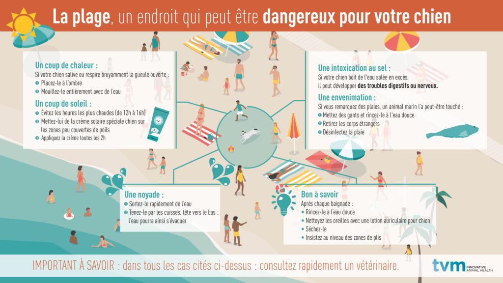 infographie les dangers de la plage et les risques d'intoxication