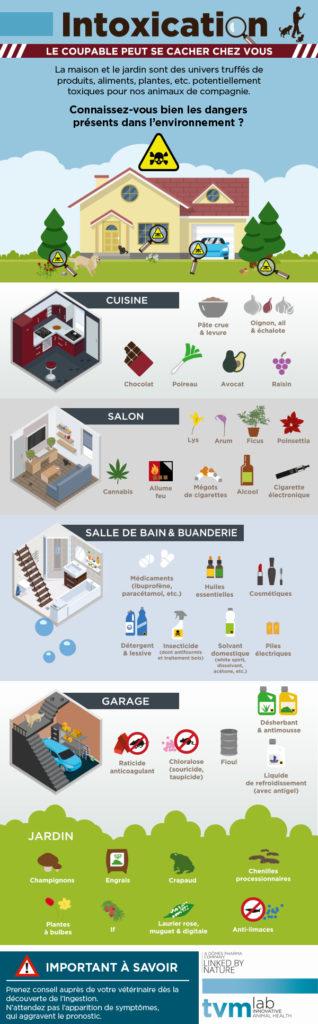 INFOGRAPHIE ET VISUELS ECRAN SALLE D'ATTENTE : Les principaux dangers d'intoxication de la maison et du jardin pour le chien et le chat 1