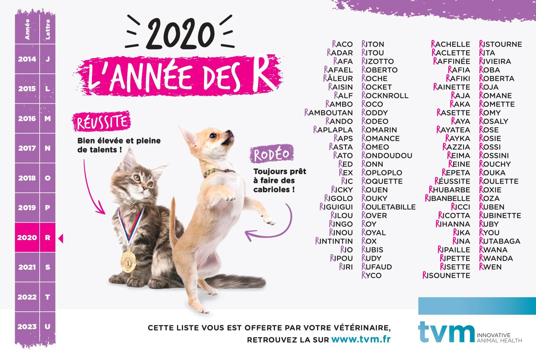 Idées de noms en R pour chiens et chats [année 2020]