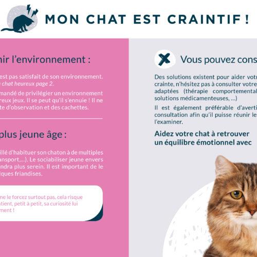 Plaquette alphazium chat TVM-8