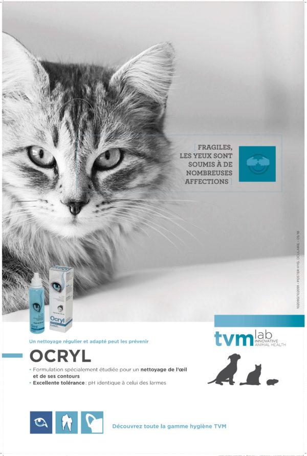 Poster Hygiène des yeux (à l'unité) 1