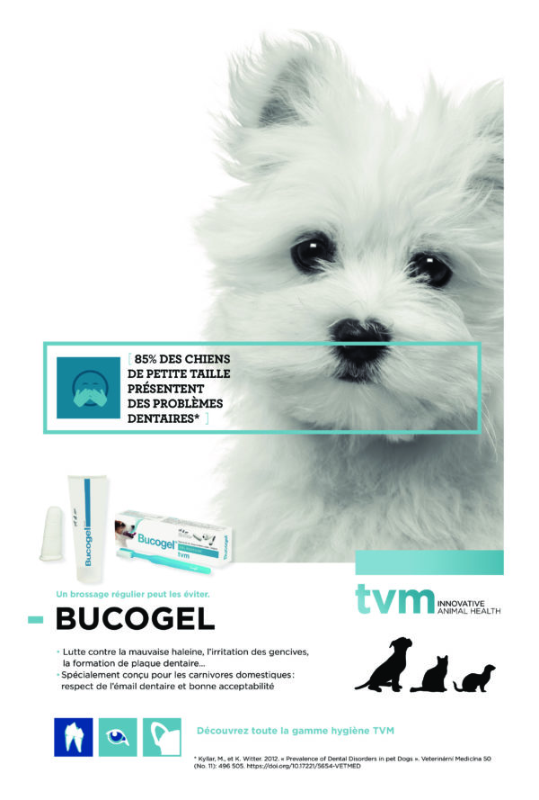 poster TVM - Hygiène des dents