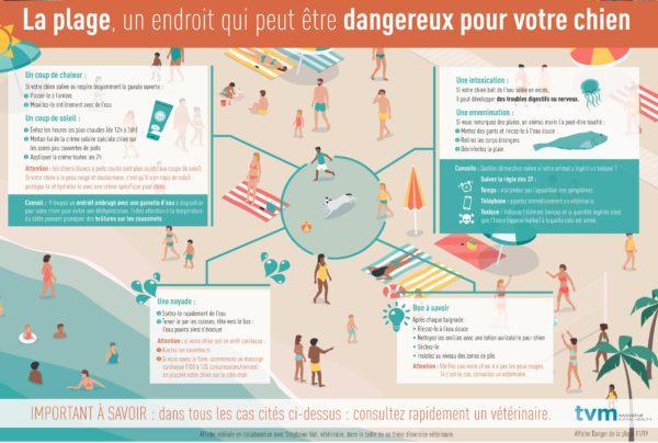 Poster Dangers de la plage (à l'unité) 1