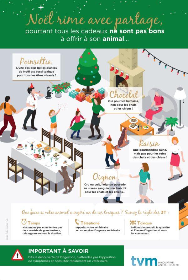 Poster Noël et risques d'intoxications (à l'unité) 1
