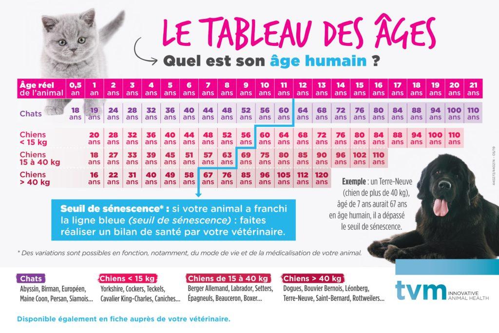 Tableau de correspondance des âges des chiens et chats 1
