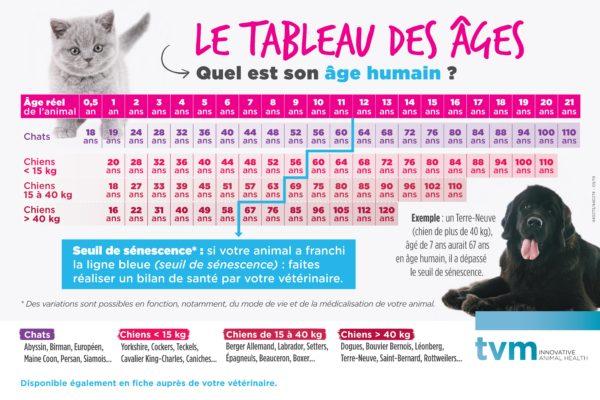 Poster Tableau des âges (à l'unité) 1