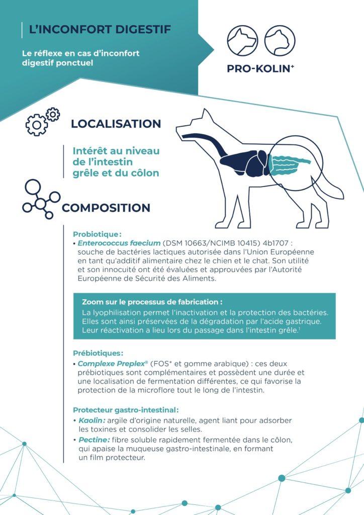 Pochette Gastro Entero 360° Vétérinaire 11