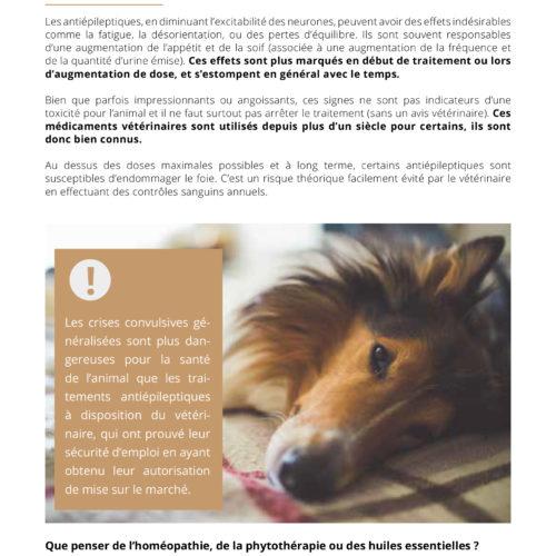 Remis de visite Comprendre l'épilepsie TVM-10