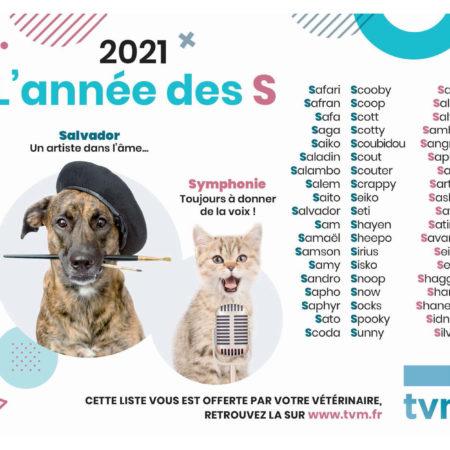 bloc-liste-des-noms-en-S-2021