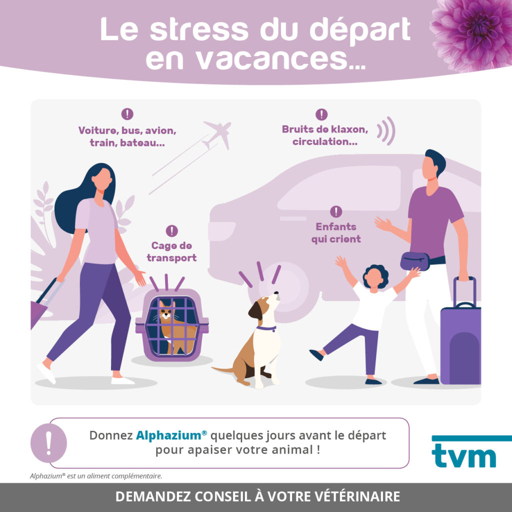 infographies Stress départ en vacances