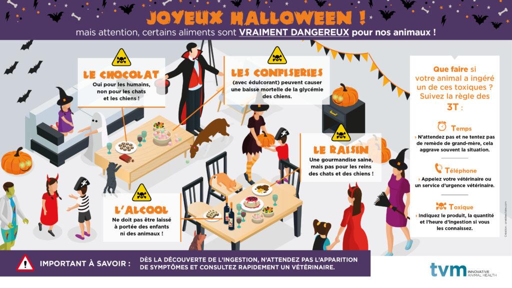 INFOGRAPHIE ET VISUEL ECRAN SALLE D'ATTENTE : Joyeux Halloween ! 2
