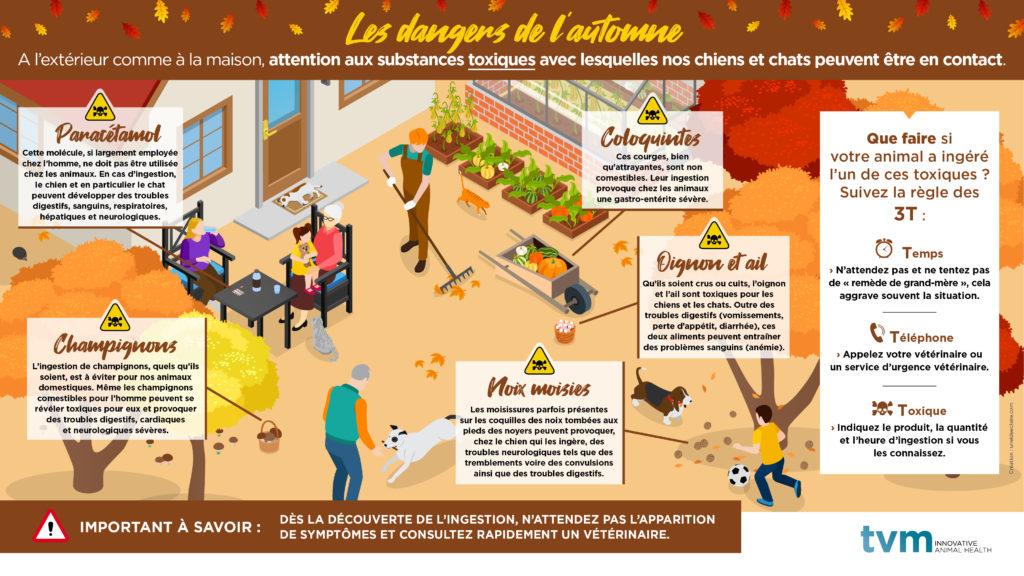 INFOGRAPHIE ET VISUEL ECRAN SALLE D'ATTENTE : Les dangers de l'automne 2