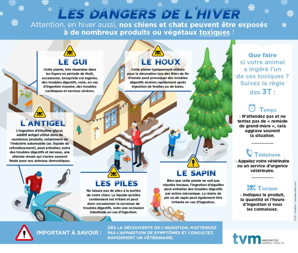 INFOGRAPHIE ET VISUEL ECRAN SALLE D'ATTENTE : Les dangers de l'hiver 1