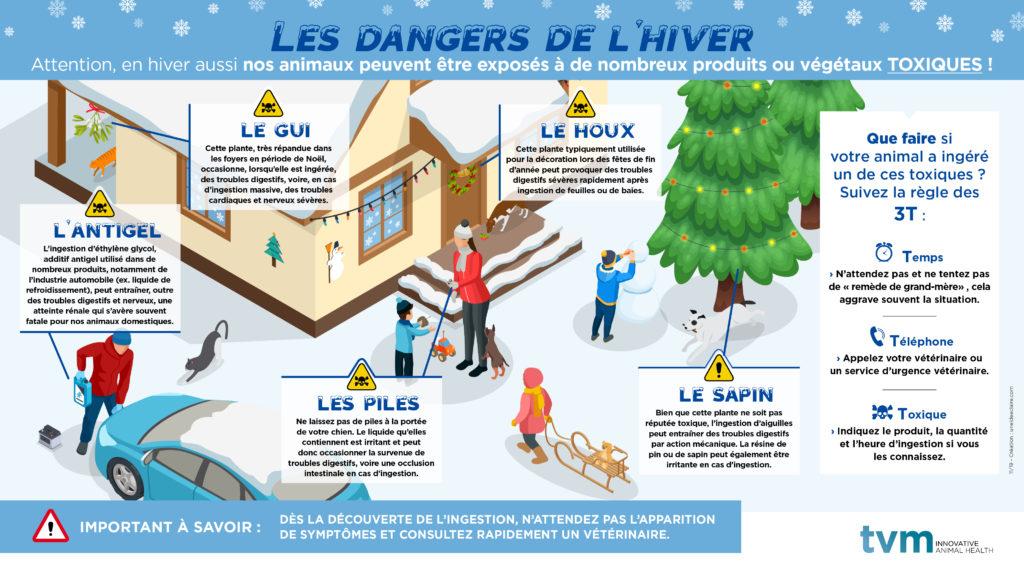 INFOGRAPHIE ET VISUEL ECRAN SALLE D'ATTENTE : Les dangers de l'hiver 2