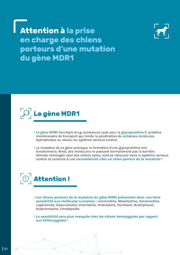 Gène MDR1