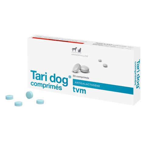 Tari-dog 1