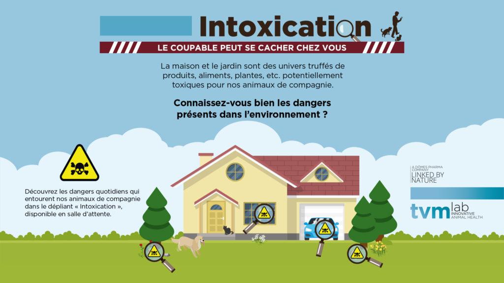 INFOGRAPHIE ET VISUELS ECRAN SALLE D'ATTENTE : Les principaux dangers d'intoxication de la maison et du jardin pour le chien et le chat 2