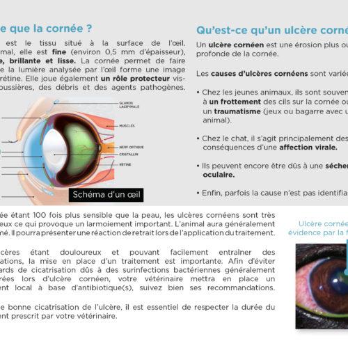 leaflet-ulcere-corneen-2