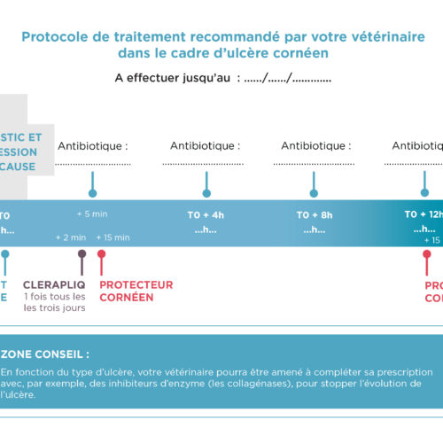 leaflet-ulcere-corneen-3