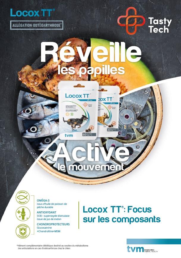 plaquette technique Locox TT