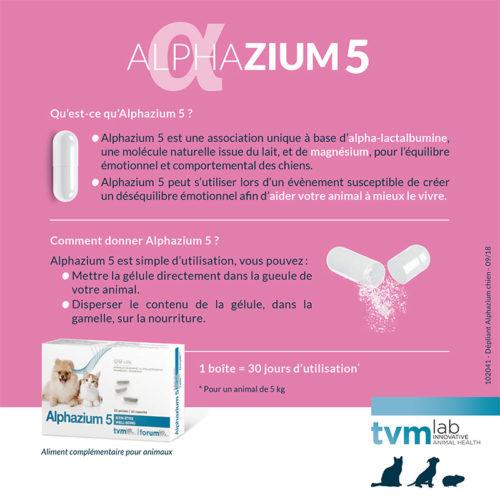 Leaflet-Alphazium-chien-20x20-180712-HD-pap-2-16