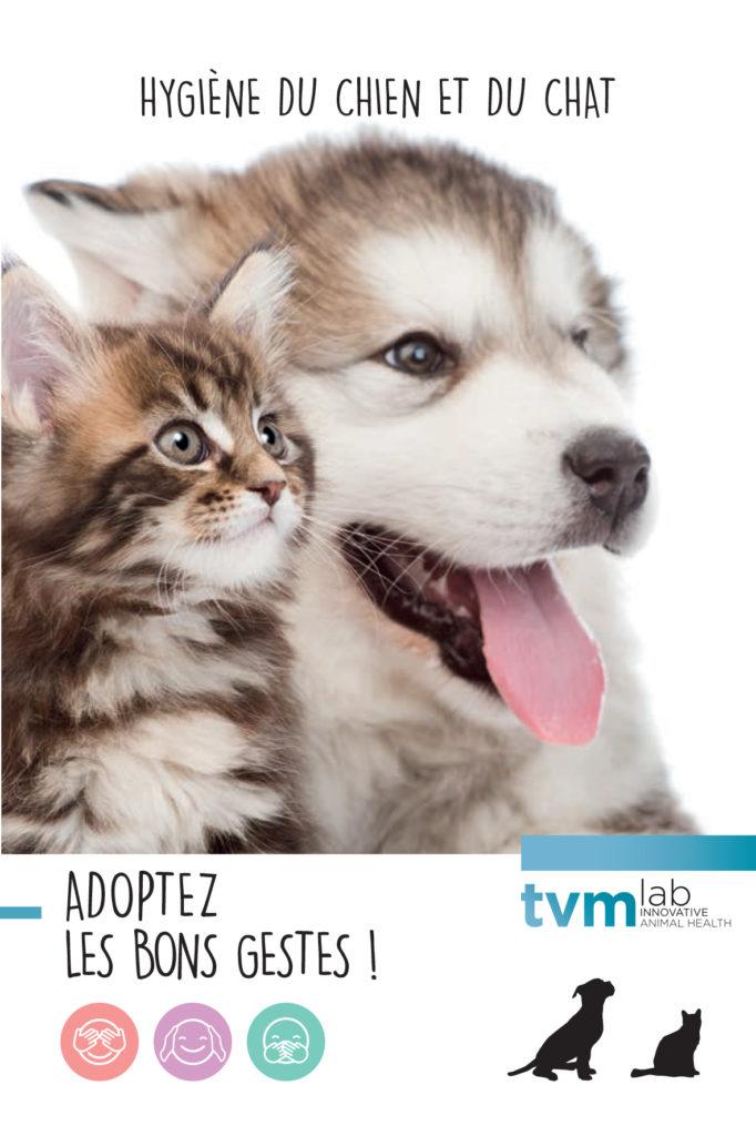 Têtes de chiot et chaton : Dépliant hygiène TVM, adoptez les bons gestses.