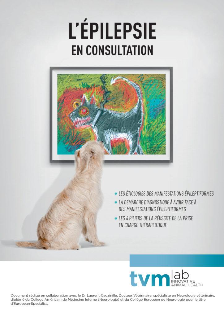 Plaquette L'épilepsie en consultation 1
