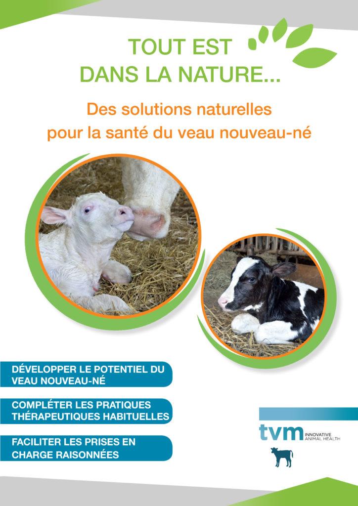 Documents vétérinaire à télécharger 26