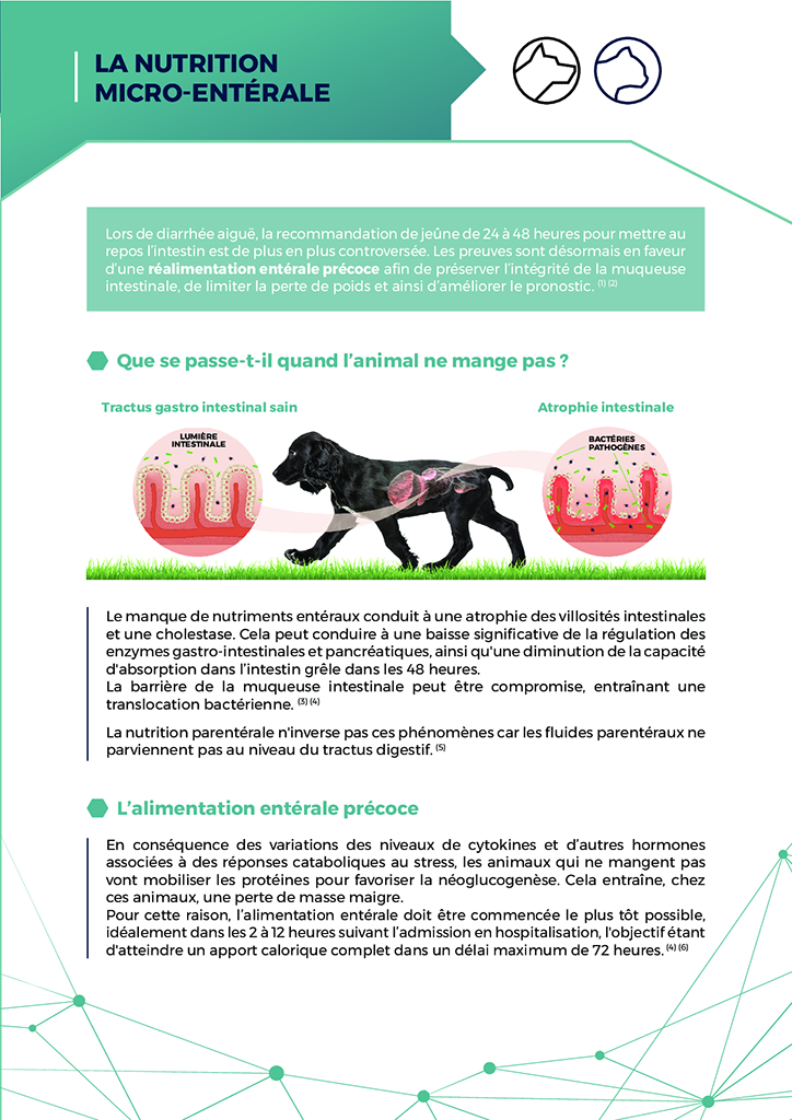 Documents vétérinaire à télécharger 21