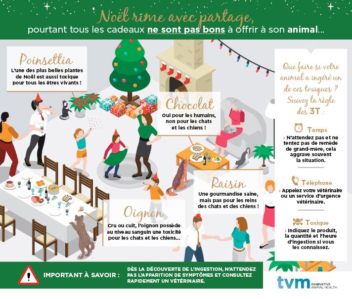 Les risques de Noël pour vos animaux 1
