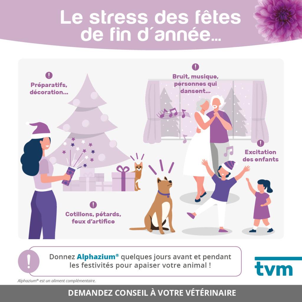 Infographies Comportement : stress et anxiété 1
